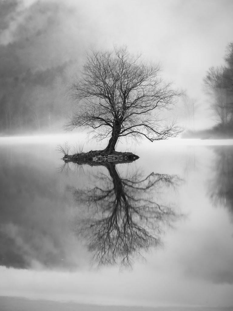 Lake Wawaka Black and White by Rebecca Andre of Catskill Media